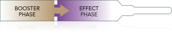 Stop & Grow effect: Booster- und effect phase